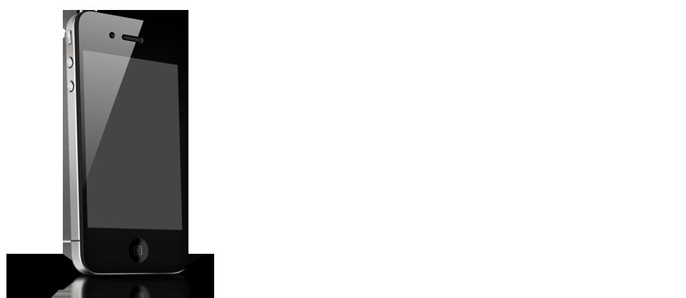 Dorthz-contact01